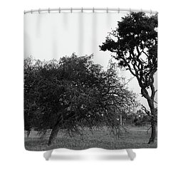 Communion Shower Curtain by Beto Machado