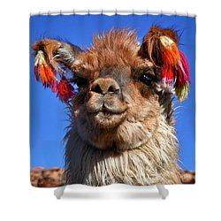 Shower Curtain featuring the photograph Como Se Llama by Skip Hunt