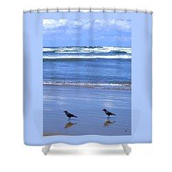 Companion Crows Shower Curtain