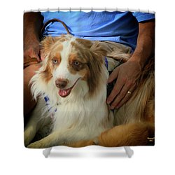 Companion Shower Curtain by Dennis Baswell