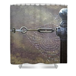 Comparative Engineering Shower Curtain by Laurie Stewart