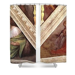 Comparative Sistine Chapel Michaelangelo Shower Curtain