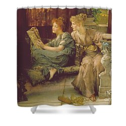 Comparison Shower Curtain by Sir Lawrence Alma-Tadema