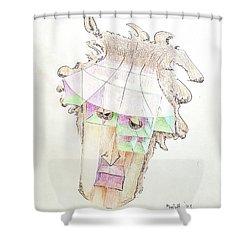 Compartment Man Shower Curtain
