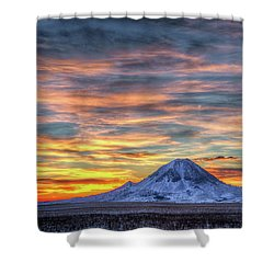 Complicated Sunrise Shower Curtain by Fiskr Larsen