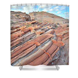 Concentric Circles Of Sandstone At Valley Of Fire Shower Curtain
