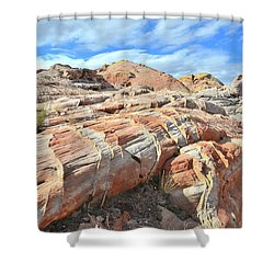Concentric Color In Valley Of Fire Shower Curtain