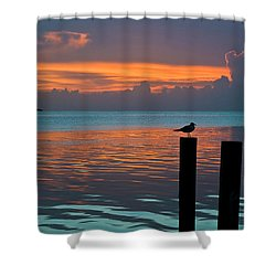 Conch Key Sunset Bird On Piling Shower Curtain