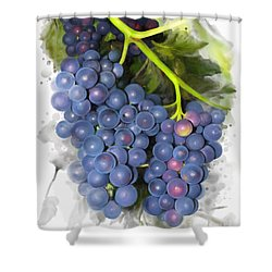 Shower Curtain featuring the painting Concord Grape by Ivana Westin