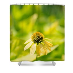 Cone Squared Shower Curtain