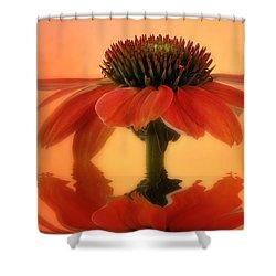 Coneflower Shower Curtain