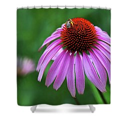 Shower Curtain featuring the photograph Coneflower by Judy Vincent