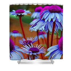 Coneflower Madness Shower Curtain