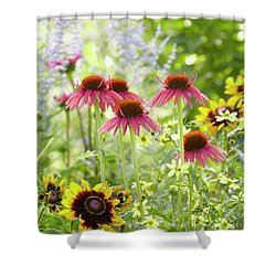 Coneflower Scene Shower Curtain