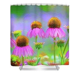 Coneflowers Shower Curtain