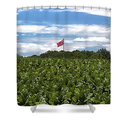 Confederate Flag In Tobacco Field Shower Curtain