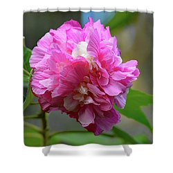Shower Curtain featuring the photograph Confederate Rose by Jimmie Bartlett