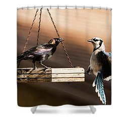 Confrontation Shower Curtain