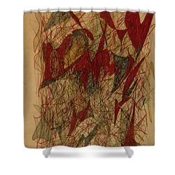 Conglomerate Synthesis  Shower Curtain