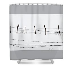 Connected -  Shower Curtain