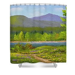 Shower Curtain featuring the painting Connecticut River Spring by Frank Wilson