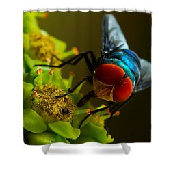 Compound Eye Of  Fly - Macro Shower Curtain