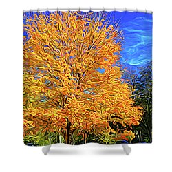 Constant Motion Shower Curtain by Dennis Baswell