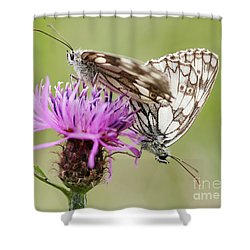 Contact - Butterflies On The Bloom Shower Curtain by Michal Boubin