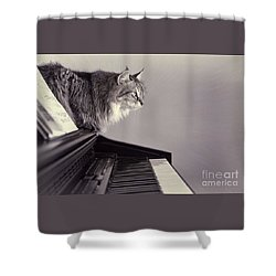 Contemplating Memory Shower Curtain