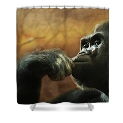 Shower Curtain featuring the photograph Contemplation by Lori Deiter