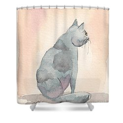 Shower Curtain featuring the painting Contemplation by Terry Taylor