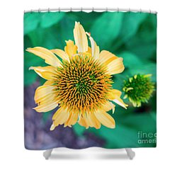 Contemporary Yellow And Green Floral Photo Art 443 Shower Curtain