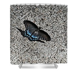 Contrast  Nature Verse Industrial Shower Curtain