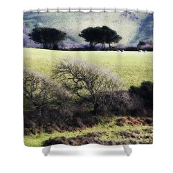 Contrast Of Trees Shower Curtain by Gary Bridger