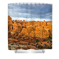 Contrasts In Arches National Park Shower Curtain by Sue Smith