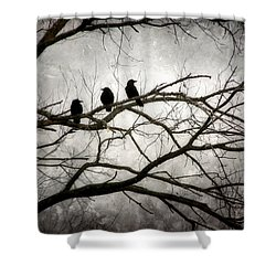Contrive - By The Light Of The Moon Shower Curtain