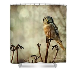 Convenient Perch Shower Curtain