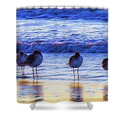 Shower Curtain featuring the photograph Convention by Joye Ardyn Durham