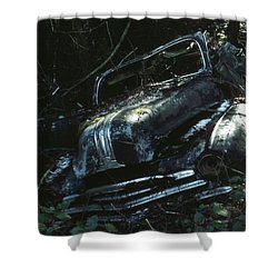 Convertible Shower Curtain by Laurie Stewart