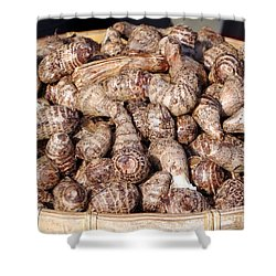 Cooked Taro Root Shower Curtain