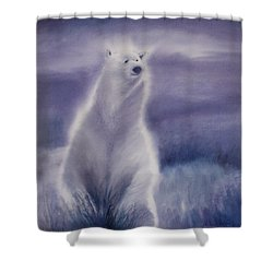 Cool Bear Shower Curtain
