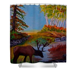 Shower Curtain featuring the painting Cool Drink by Leslie Allen