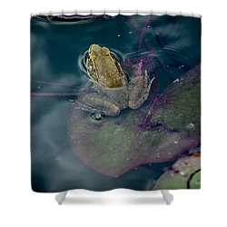Cool Frog-hot Day Shower Curtain