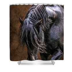 Devine Cool Hand Luke Shower Curtain