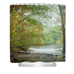 Cool Morning Shower Curtain by Iris Greenwell