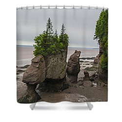 Cool Rocks Shower Curtain