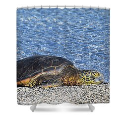 Shower Curtain featuring the photograph Cooling Off by Pamela Walton