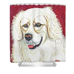 Shower Curtain featuring the painting Cooper II by Ania M Milo