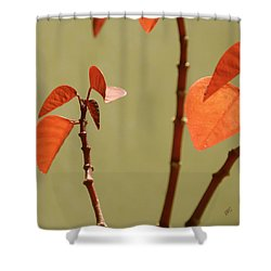 Shower Curtain featuring the photograph Copper Plant 2 by Ben and Raisa Gertsberg