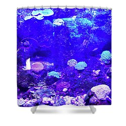 Shower Curtain featuring the digital art Coral Art 2 by Francesca Mackenney